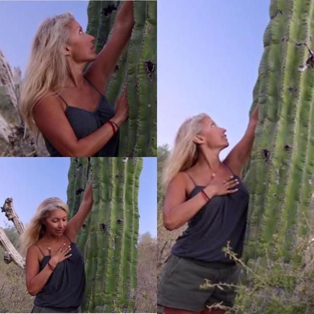 cactus love silvia