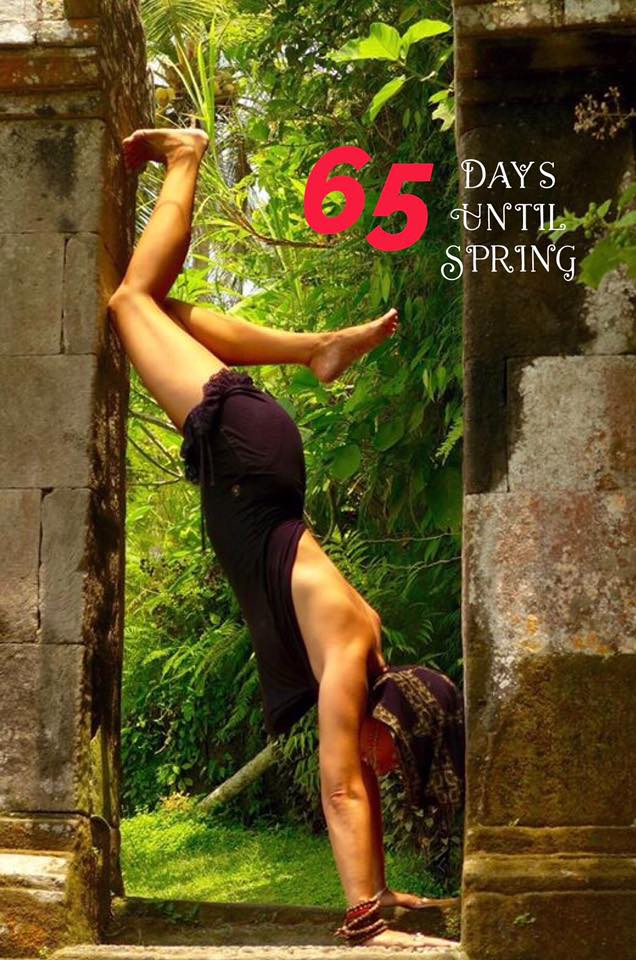 65-days-until-spring-2017
