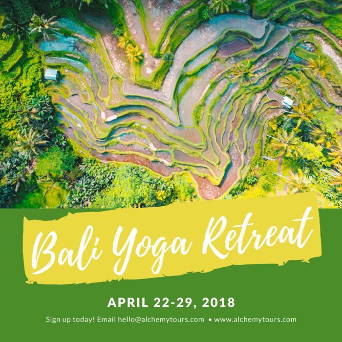 Bali Retreat 2018 Rice Fields